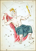 Cepheus (by Urania's Mirror or a view of the Heavens)